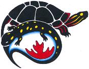 CARCNET Logo
