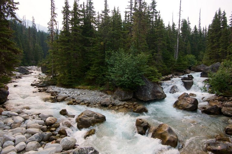 land and water protection in Canada